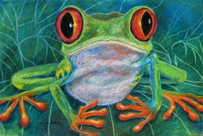 New Oil Pastel Tree Frog 24 x 36 in. | My Daily Paint