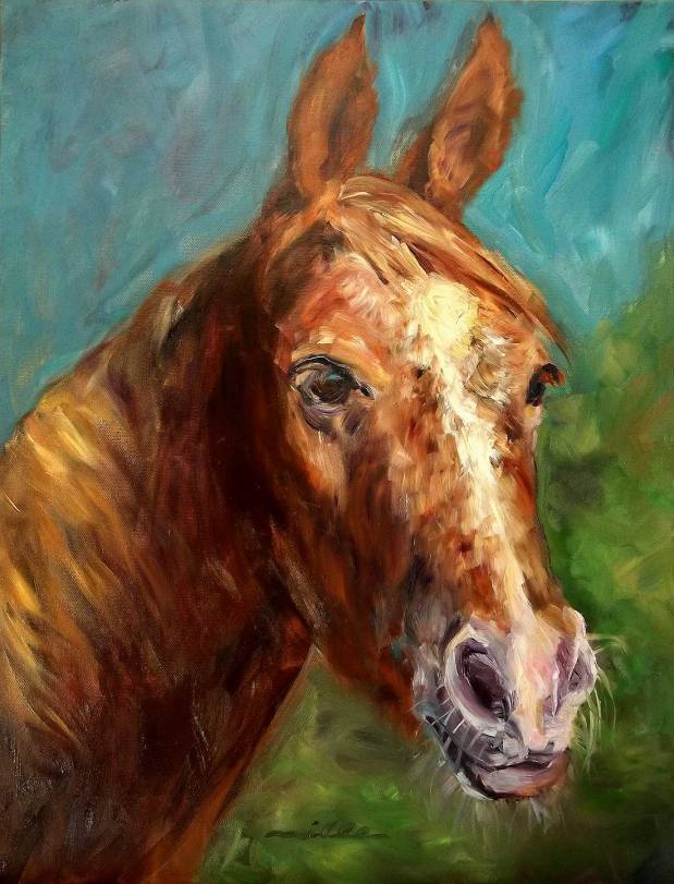 horsePortrait_miller
