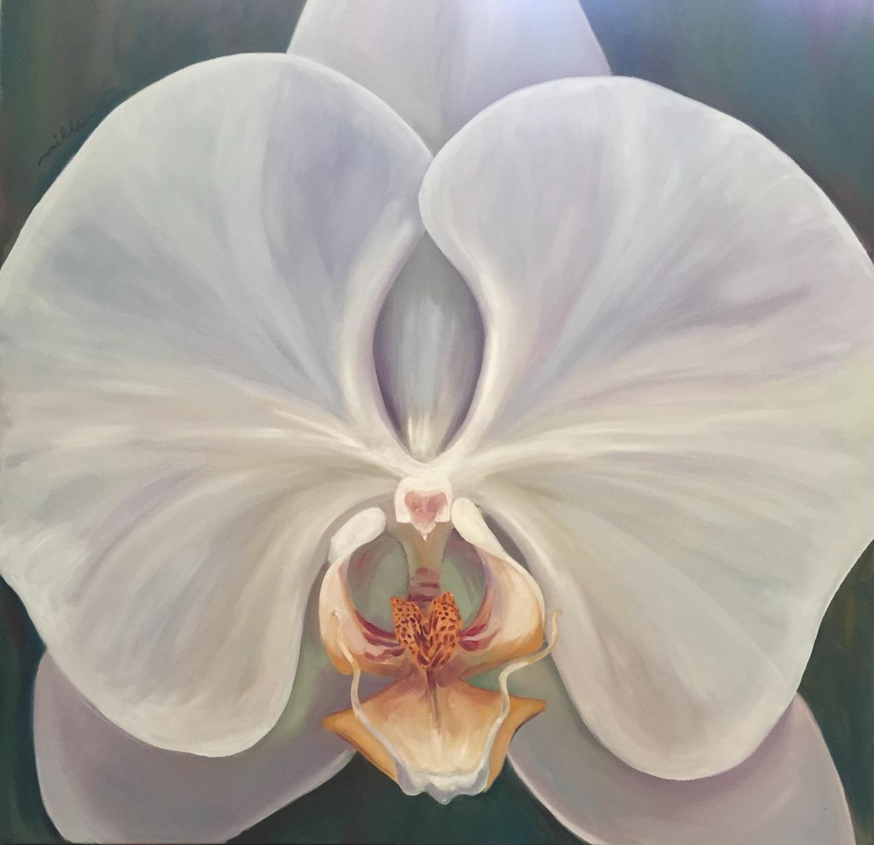 Large Orchid Miller